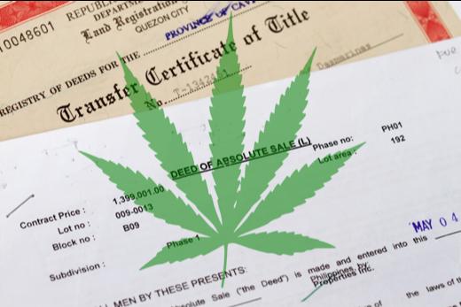 medical marijuana title problem