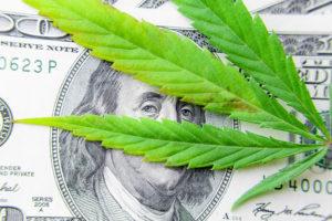 legal-issues-marijuana-industry