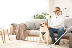 housing_laws_service_animals